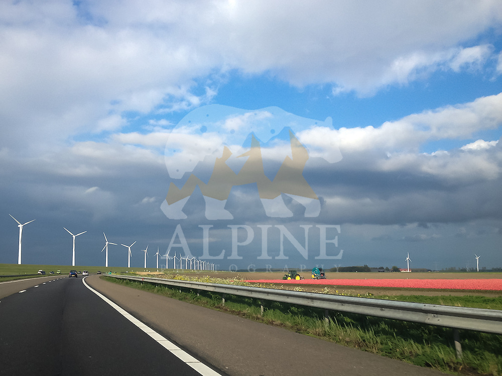 A wide angle view of a wind farm next to the national road in the province of Flevoland in the Netherlands.