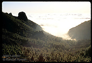 02: CANARY ISLANDS TENERIFE, NATL PARK