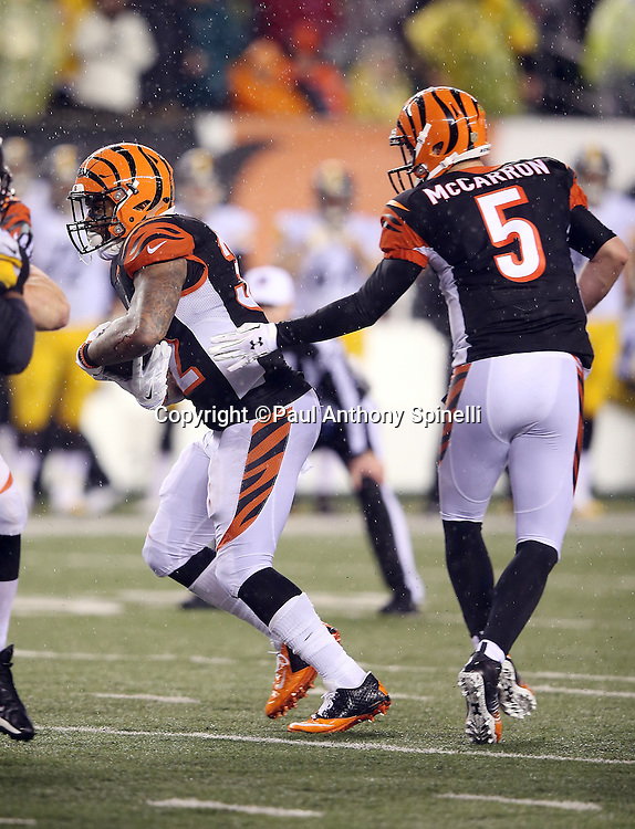 Cincinnati Bengals quarterback AJ McCarron (5) hands off the ball to Cincinnati Bengals running back Jeremy Hill (32) on a late fourth quarter play in which Hill gets stripped of the ball, fumbles, and the ball is recovered by the Pittsburgh Steelers, leading to the Steelers dramatic comeback win, during the NFL AFC Wild Card playoff football game against the Pittsburgh Steelers on Saturday, Jan. 9, 2016 in Cincinnati. The Steelers won the game 18-16. (©Paul Anthony Spinelli)