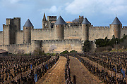 Low angle view of Citadel of Carcassonne, 13th century, and adjacent vineyard, Carcassonne, Aude, France, pictured on February 24, 2007, on a cloudy winter afternoon. The two outer walls of the concentric fortified city are defended by towers and barbicans, and a draw bridge across a moat leads to the keep of the castle. Carcassonne was a stronghold of Occitan Cathars during the Albigensian Crusades but was captured by Simon de Montfort in 1209. He added extra fortifications and Carcassonne became a citadel on the French border with Aragon. The fortress was restored in 1853 by Eugene Viollet-le-Duc. Today it is a UNESCO World Heritage site. Picture by Manuel Cohen.