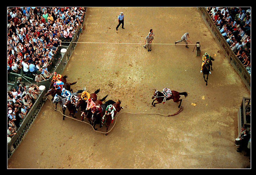 The Bruco contrada, right, enters into the mossa (starting gate) as the mossier drops the rope and starts the race. The tenth horse in the lineup has the disadvantage of starting in the outside lane, but the advantage of a running start.