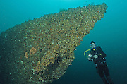The HMAS Adelaide is a former Australian naval warship that was sunk to create an artificial dive site, photographed off Terrigal, New South Wales, Australia, Pacific Ocean.