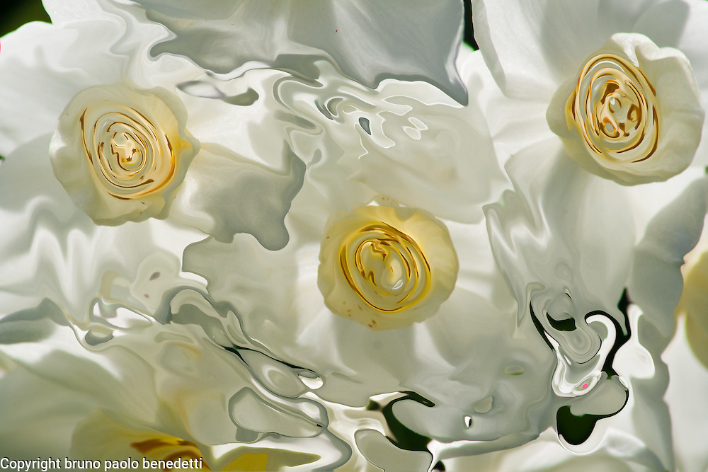 abstract white floating veils with light yellow spots inside, shades of yellow and light from behind
