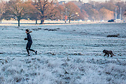 UNITED KINGDOM, London: 30 January 2019 A jogger and her dog make their way through a frosty Richmond Park with the London skyline in the background this morning. The cold weather has caused chaos across the country and is set to get colder in the next few days.<br /> Rick Findler / Story Picture Agency
