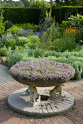 The Herb Garden at Sissinghurst Castle. Stone bowl of thyme in the foreground