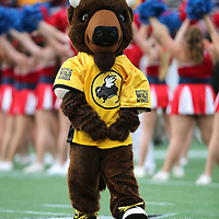 ORLANDO, FL - JANUARY 01:  The Buffalo Wild Wings mascot performs during the Buffalo Wild Wings Citrus Bowl between the Minnesota Golden Gophers and the Missouri Tigers at the Florida Citrus Bowl on January 1, 2015 in Orlando, Florida. (Photo by Alex Menendez/Getty Images) *** Local Caption ***