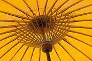 Yellow umbrella.