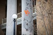 a few orange leaves left on a tree in downtown Laurel, Mississippi