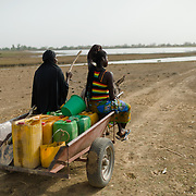 Women from the Ouedraogo household on their way to collect water from a dam on 27 February 2014. Each round trip takes over an hour, and typically three trips are made in a day.
