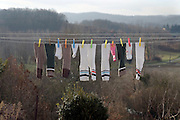 various socks of a family on a wash line