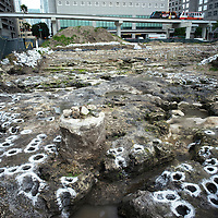 Ground view of the southwest circle at the Tequesta archaeology site at the Met Square development in downtown Miami. Site managed by Archaeological and Historical Conservancy (AHC).