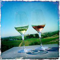 2013 May 13:  White and Rose wines at Artesa in Carneros. Artesa focuses on producing small, ultra-premium lots of the varietals for which the Carneros and the Napa Valley are best known - Chardonnay, Pinot Noir, Merlot and Cabernet Sauvignon.