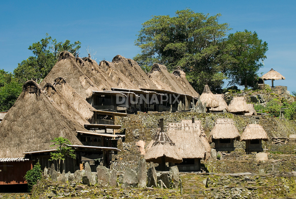 Traditional homes, Bena Village, Bajawa, Flores