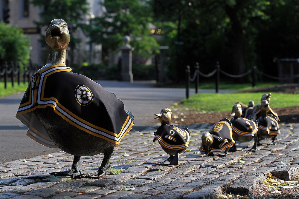 Boston, New England and fans around the country have Bruins fever. A Bruins parade is already on its way at the Boston Public Garden where the famous bronze statue &quot;Make way for Ducklings&quot; is decorated in yellow and black capes. A favorite Boston landmark and tourist attraction for young and old, this bronze sculpture by Nancy Schoen was created in 1987 celebrating the 150th anniversary of the Boston Public Garden. It pays tribute to Robert McCloskeys popular children book, written in 1941, about a family of ducks who make their home here. To reach the lagoon in the Public Garden, Mrs. Mallard, the mother duck, leads her babies across a series of dangerous streets assisted by a friendly police officer. Because of the storys close association with Boston, no replicas exist in other cities, with the exception of an installation in Gorky Park in Moscow at the request of Russian First Lady Raisa Gorbachev. <br /> <br /> This Boston photo image of the ducklings bronze statue is available as museum quality photography prints, canvas prints, acrylic prints or metal prints. Prints may be framed and matted to the individual liking and wall decoration needs: <br /> <br /> http://juergen-roth.artistwebsites.com/featured/boston-bruins-ducklings-juergen-roth.html<br /> <br /> Good light and happy photo making!<br /> <br /> My best,<br /> <br /> Juergen<br /> http://www.exploringthelight.com<br /> http://www.rothgalleries.com<br /> @NatureFineArt<br /> http://whereintheworldisjuergen.blogspot.com/<br /> https://www.facebook.com/naturefineart