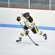 AIC Hockey vs Army