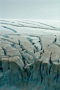 Large cracks in the ice on the Antarctic Peninsula with red lichen growing on top.