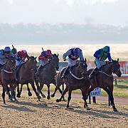 Lingfield 17th January 2013
