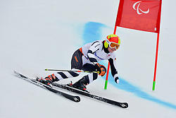 Andrea Rothfuss, Women's Giant Slalom at the 2014 Sochi Winter Paralympic Games, Russia