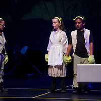 Shrek Jr. Performance - Miramar Cultural Center
