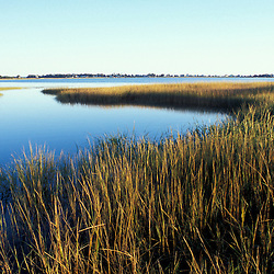 Biddeford, ME. A tidal creek empties into Biddeford Pool. Salt marsh.  TPL project - Anuszewski property.