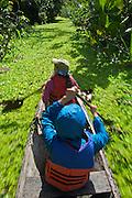 Travelers paddle through a green trail connecting Marasha Lake to the Amazon River - Amazonas - Peru