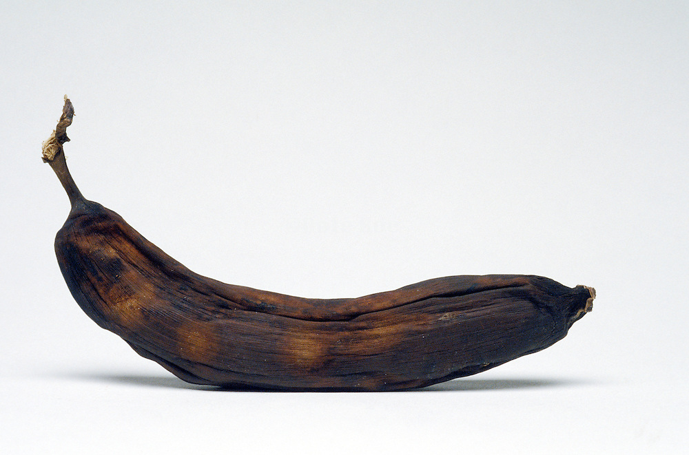 Rotten old banana