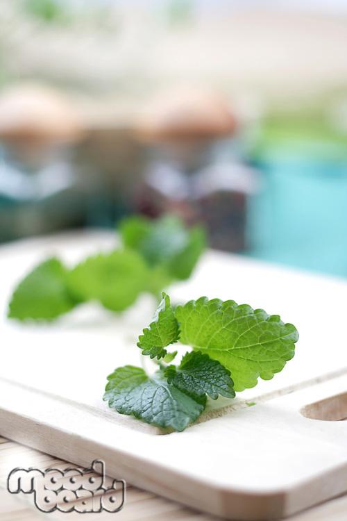 Close up of fresh mint