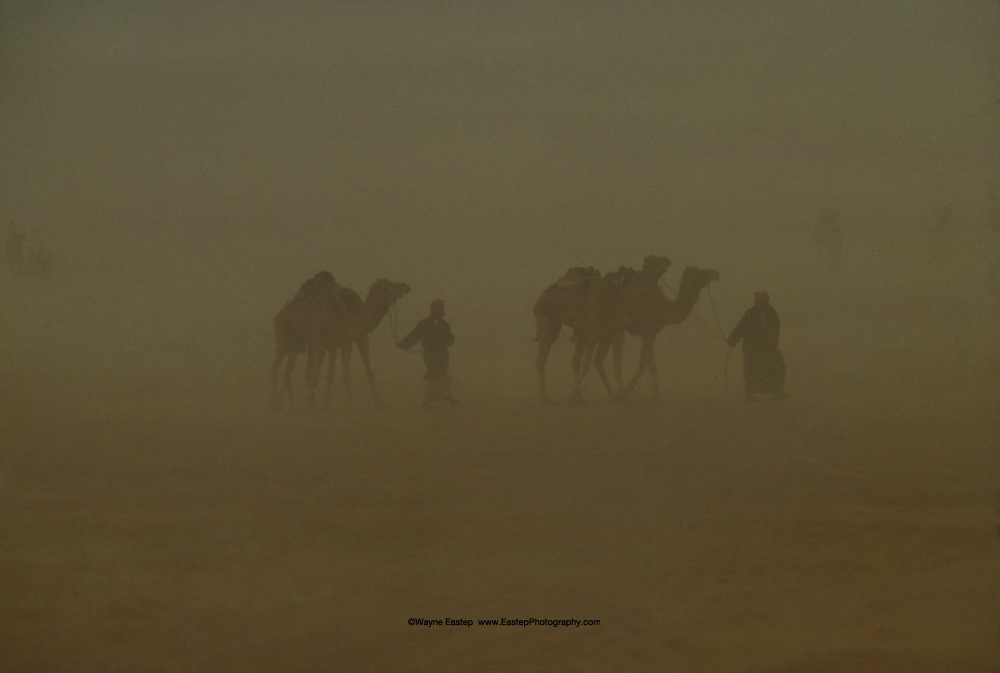 Bedouin men in Arabian sandstorm