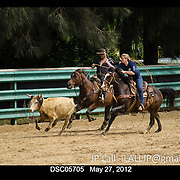 Rodeo Test