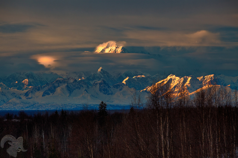 The setting sun puts dramatic lighting on Denali, a.k.a., Mount McKinley in the Alaska Range from Talkeetna, Alaska. The mountian and surrounding park lands are popular with visitors and mountaineers from around the world.