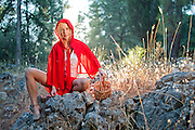 Little red ridding hood in the forest
