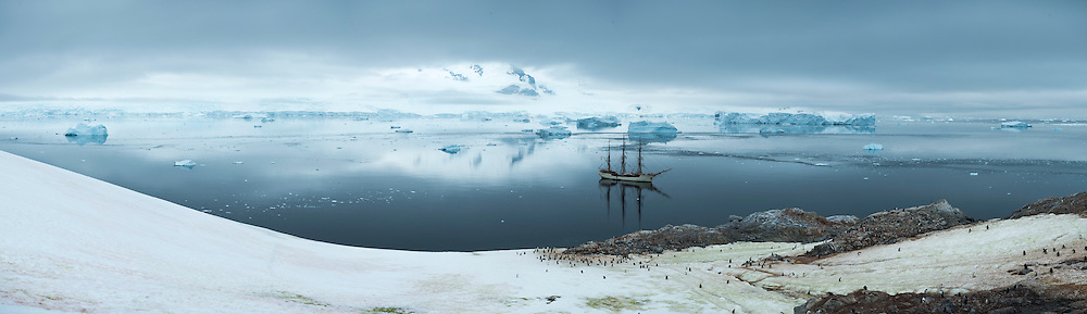 Antarctica, February 2016. Morning landing in Andford, Neko Harbour brings Gentoo Penguins and a spectacular glacier. Dutch Tallship, Bark Europa, explores Antarctica during a 25 day sailing expedition. Photo by Frits Meyst / MeystPhoto.com