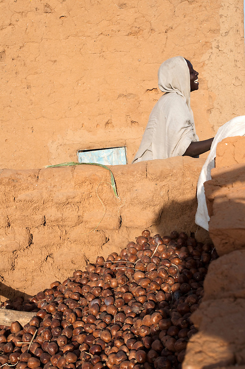 A young woman stocks doum palm fruit that she has gathered in nearby groves in her village in Assaba province. Oudey Niagl&eacute;, Mauritania. 08/03/2011.<br /> Photo &copy; J.B. Russell