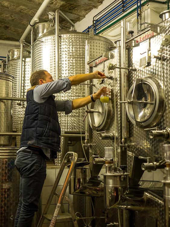 Tamás Kovács draws wine from tank