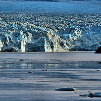 Icebergs Floating Near Hubbard Glacier in Alaska<br />