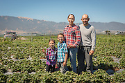 Victor Cortez and his family harvest Mexican Sour Gherkins on his small farm as part of the ALBA program in Salinas, CA.