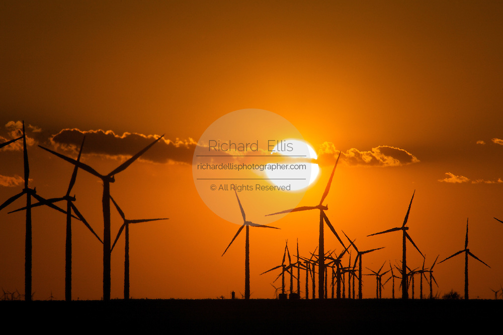 Wind turbines generating electrical power at Horse Hollow Wind Farm, Nolan county, Texas the world's largest wind power project during sunset.