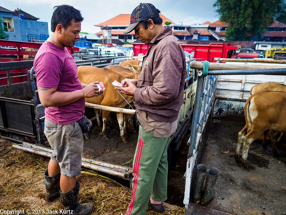 06 AUGUST 2017 - MENGWI, BALI, INDONESIA: A man (right) pays for a cow he bought in the Bringkit Market in Mengwi, about 30 minutes from Denpasar. Bringkit Market is famous on Bali for its Sunday livestock and poultry market. Hundreds of the small Bali cows are bought and sold there every week. Bali's local markets are open on an every three day rotating schedule because venders travel from town to town. Before modern refrigeration and convenience stores became common place on Bali, markets were thriving community gatherings. Fewer people shop at markets now as more and more consumers go to convenience stores and more families have refrigerators.     PHOTO BY JACK KURTZ