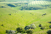 Rolling hills and dry valleys upland chalk landscape, form Chervil Down, Wiltshire, England, UK