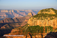 Crisp early morning light from the Bright Angel Point area on north rim.