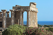 Portico of Temple E or Temple of Hera, built 460-450 BC, on the East Hill of the ancient ruined Greek city of Selinunte, Sicily, Italy. The peristyle consists of 6 x 15 Doric columns with several staircases and traces of stucco and friezes. It was rebuilt 1956-59. Selinunte was founded in 628 BC and was an important Greek colony, home to up to 100,000 people at its peak and abandoned in 250 BC. The city consists of an acropolis housing 2 main streets and 5 temples, 3 other hills with housing and temples and 2 necropoleis. Picture by Manuel Cohen