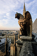 France. Paris.  elevated view on Paris. 7th district.  Saint Clotilde church. the gargoyls , bestiaire de pierre,