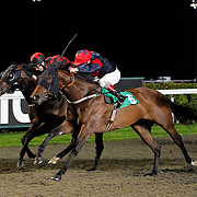 Batchworth Lady and Jimmy Quinn winning the 9.10 race