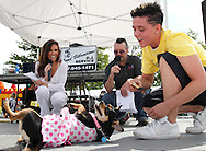 Ann Reynolds of Fox 45 TV and Shaun Vincent of Mix 107.7 watch six-year-old Maggie roll over as part of the best trick contest during the Humane Society of Greater Dayton's Furry Skurry at Miami Valley Hospital South in Centerville, Saturday, May 12, 2012.