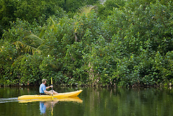 Man kayaking on river near Jaguar Reef Lodge, Hopkins, Stann Creek District, Belize, Central America   MR