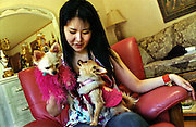 Shoko Mizuta with her dogs. Taking care of her two little dogs is her main occupation. She spends a large amount of money on dog clothes and accessories. She claims to be the only Japanese who has a real dog bedroom in her house..Osaka April 2004..
