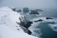 Winter scene from Arnarstapi, Snæfellsnes Peninsula, West Iceland.
