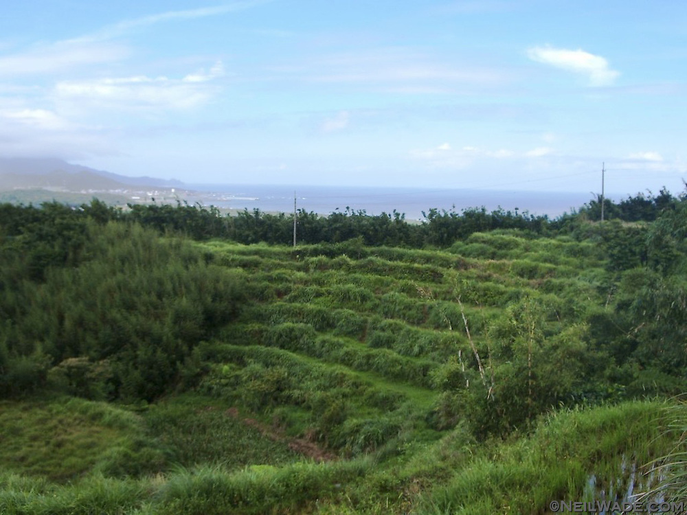 The Caoling Hiking Trail passes through many grassy field and farmlands.