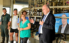 Northland-National MP Steven Joyce campaigns by-election with crown car