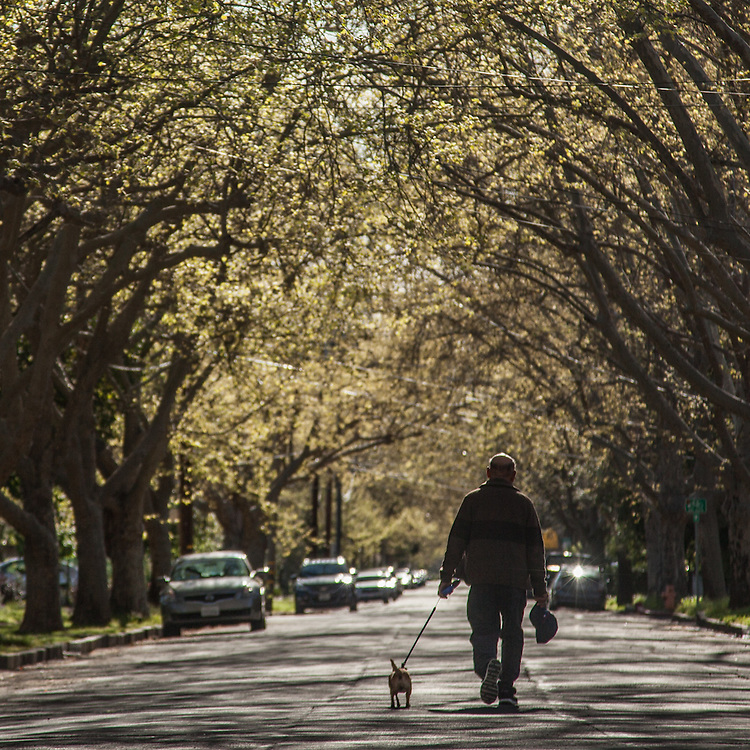 Nicolas with his dog on Cedar Street in Calistoga